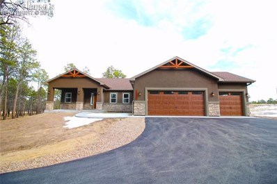 14973 Snowy Pine Point, Colorado Springs, CO 80908 - #: 4226171