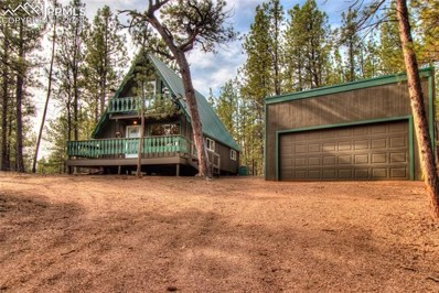 94 Pickens Road, Florissant, CO 80816 - #: 4894772