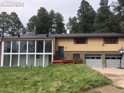 15120 Highway 83, Colorado Springs, CO 80921 - #: 5492623