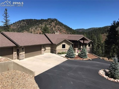 609 Crystola Court, Woodland Park, CO 80863 - #: 8195713