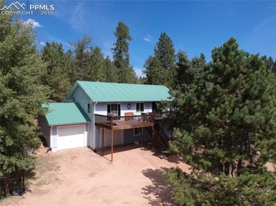 1596 County 512 Road, Divide, CO 80814 - #: 8366712