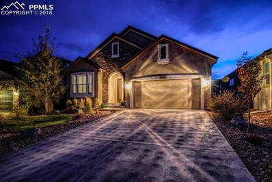 9031 Rollins Pass Court, Colorado Springs, CO 80924 - #: 8547569