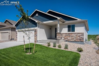 9845 Rubicon Drive, Colorado Springs, CO 80925 - #: 8554044