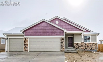 9685 Rubicon Drive, Colorado Springs, CO 80925 - #: 9007517