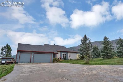 11306 Valley Drive, Larkspur, CO 80118 - #: 9645231