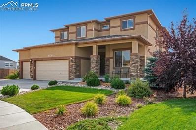 5293 Imogene Pass Place, Colorado Springs, CO 80924 - #: 9773886