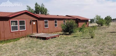 13395 Painted Horse Place, Calhan, CO 80808 - #: 9850350