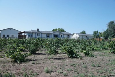 1702 Willow Street, Canon City, CO 81212 - #: 59264