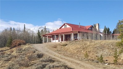 455 Mosquito Pass Road, Alma, CO 80420 - #: S1006441