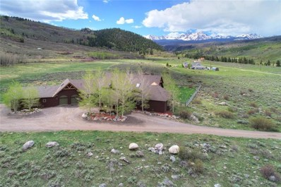 223 County Road 2408, Silverthorne, CO 80498 - #: S1008787