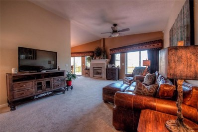 282 Fawn Court, Silverthorne, CO 80498 - #: S1008947