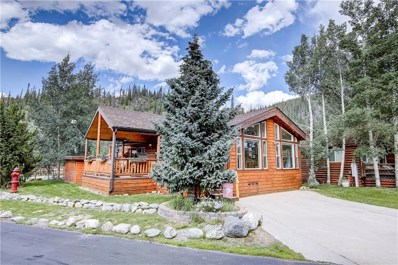85 Revett Drive UNIT 28, Breckenridge, CO 80424 - #: S1010337