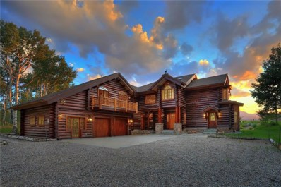 863 Rodeo Drive, Silverthorne, CO 80498 - #: S1010378