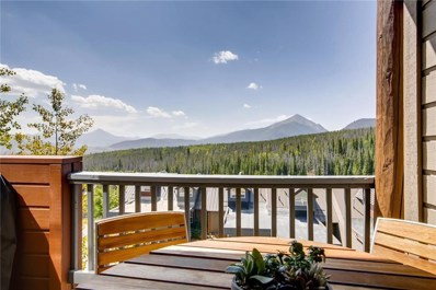 11B Justin Court UNIT 11B, Silverthorne, CO 80498 - #: S1010757