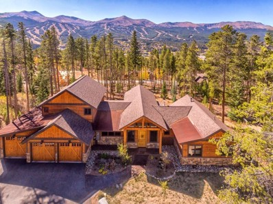 226 Moonstone Road, Breckenridge, CO 80424 - #: S1011014