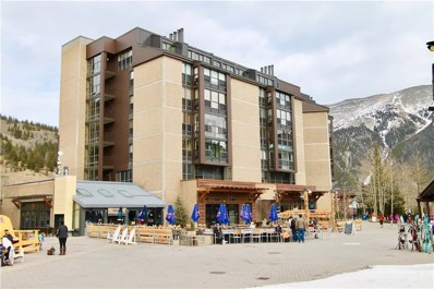 209 Ten Mile Circle UNIT 403-05, Copper Mountain, CO 80443 - #: S1011026
