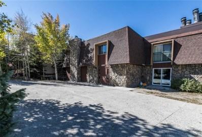 401 S Ridge Street S UNIT 2, Breckenridge, CO 80424 - #: S1011099