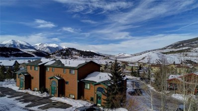 120 Cove Boulevard UNIT 207, Dillon, CO 80435 - #: S1011713