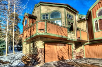 26 Rasor Drive UNIT 26, Keystone, CO 80435 - #: S1012656