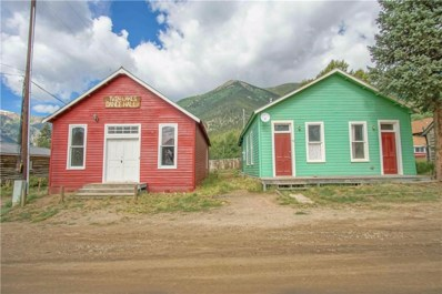 35 & 45 County Road 26, Twin Lakes, CO 81251 - #: S1013752