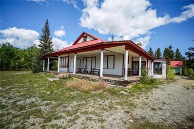 455 Mosquito Pass Road, Alma, CO 80420 - #: S1014329