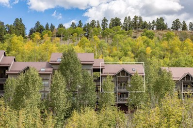 327 Adams Ranch Road, Mountain Village, CO 81435 - #: 36415