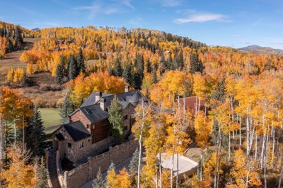 228 Russell Drive, Mountain Village, CO 81435 - #: 36735