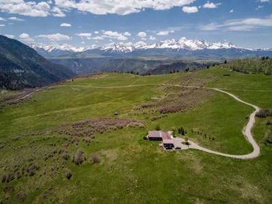 395 Flying Husky Trail, Placerville, CO 81430 - #: 37031