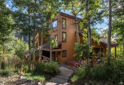3094 Booth Falls Road UNIT 12, Vail, CO 81657 - #: 933389