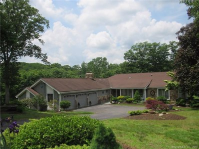 11 Holly Lane, Shelton, CT 06484 - #: 170053227