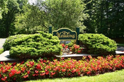 181 The Meadows UNIT 181, Enfield, CT 06082 - #: 170108628