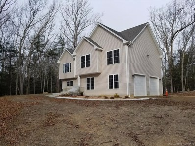 85 Lake Woods Lane, Eastford, CT 06242 - #: 170154447