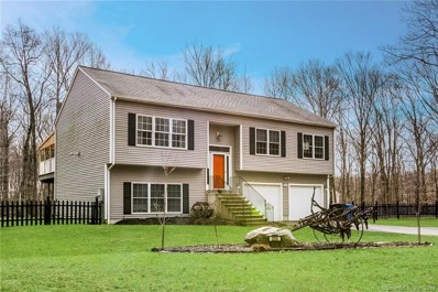 233 Mack Road, Lebanon, CT 06249 - #: 170157326