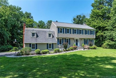 10 Deacon Abbott Lane, Redding, CT 06896 - #: 170219956