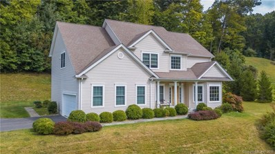 7 Nature Lane, Brookfield, CT 06804 - #: 170235685