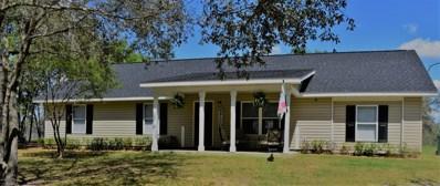 2892 River Lake Drive, Chipley, FL 32428 - #: 682328