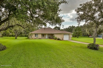 309 N Gaines Street, Oak Hill, FL 32759 - #: 824647