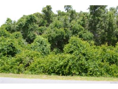 3911 N Indianriver Drive, Hernando, FL 34442 - #: 760326