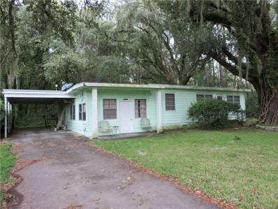 11730 SW 230th Ave Rd, Dunnellon, FL 34431 - #: 777598