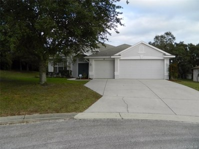 71 N Youngtree Point, Lecanto, FL 34461 - #: 779048