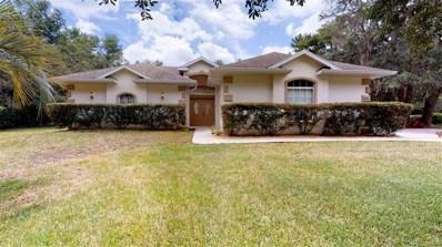 1800 E Tradewind Drive, Hernando, FL 34442 - #: 783838