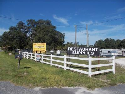 5415 W Homosassa Trail, Lecanto, FL 34461 - #: 784943