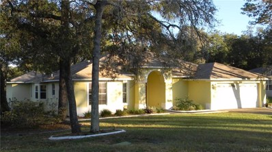 3008 Overview Lane, Spring Hill, FL 34608 - #: 785581
