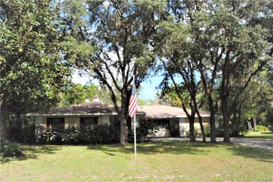 6 Salvia Court W, Homosassa, FL 34446 - #: 787281