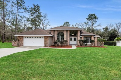 4 Gourds Court E, Homosassa, FL 34446 - #: 789978