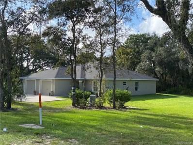 5361 W Homosassa Trail Unit 5361\/53>, Lecanto, FL 34461 - #: 796248