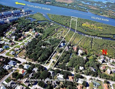 4542 S Peninsula Drive, Ponce Inlet, FL 32127 - #: 1040176