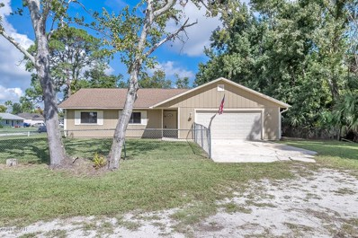 3231 Umbrella Tree Drive, Edgewater, FL 32141 - #: 1046610