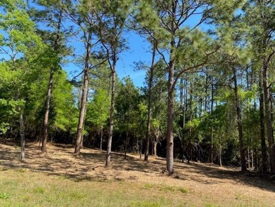 Lot 1 Quail Ridge Road, Defuniak Springs, FL 32433 - #: 870083