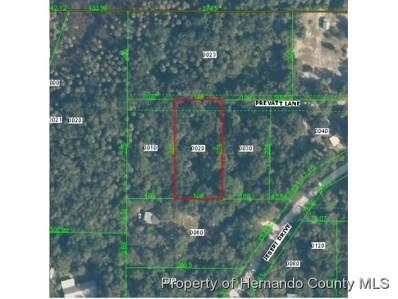 Prevatt Lane, Aripeka, FL 34679 - #: 2193689